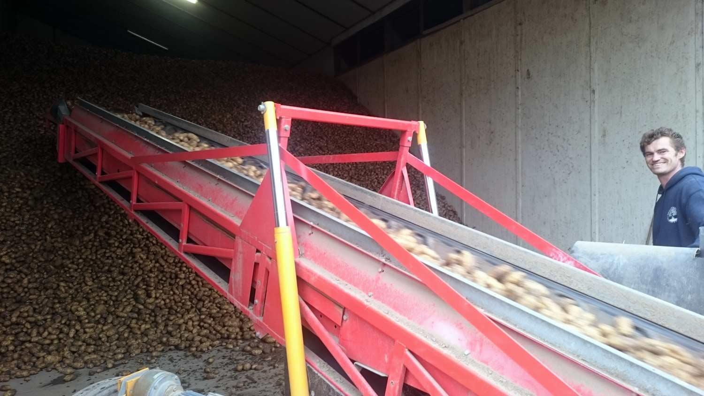 Bio-In-de-Polder-aardappelen-inschuren