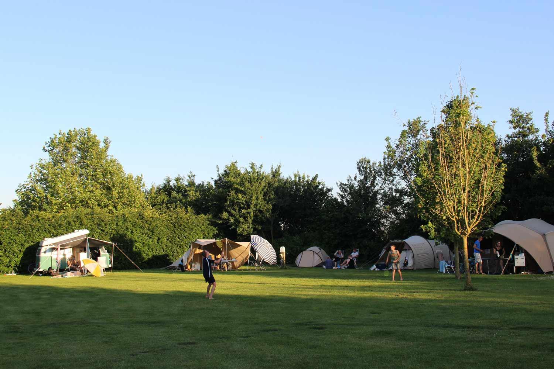 Groene-Camping-in-de-polder-prachtige-plekken