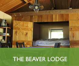 The-beaver-lodge