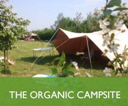 The-campsite