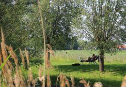 Groene Camping in de polder-rust