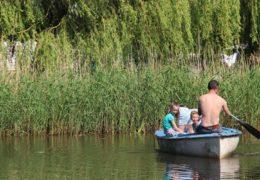 Groene Camping in de polder_beleef-de-vrijheid